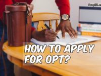 OPT Application