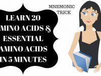 20 Amino Acids & Essential Amino Acids Mnemonic