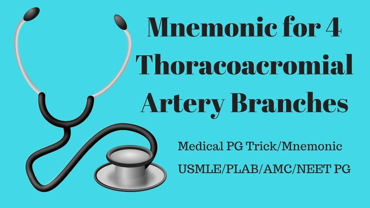 Thoracoacromial Artery Branches Mnemonic - PrepEZ