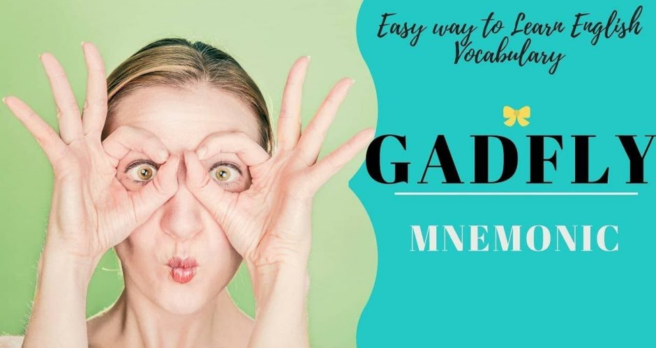 Word Of The Day – GADFLY